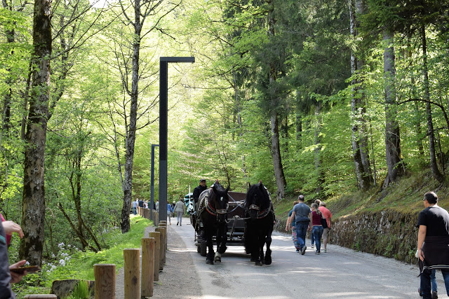 Neuschwanstein in carrozza