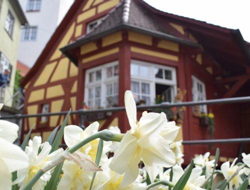 Meersburg Particolare casa